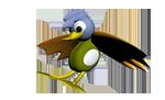 Museo das Aves | Ven a Visitarlo